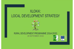 GAL XLOKK LDS Action Plan - Presentation by EY